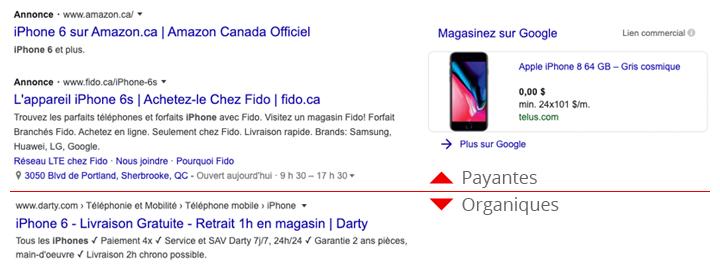 GUARANA_blogue-paid-vs-organic
